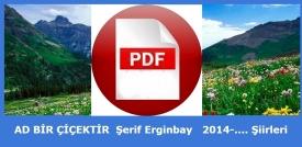 pdf-ekran-ABC