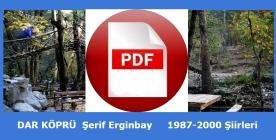 pdf-ekran-DK